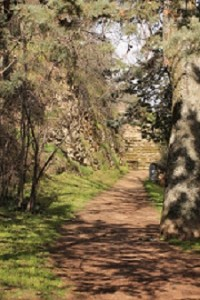 Acceso al Pinarillo