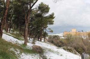Pinarillo invierno